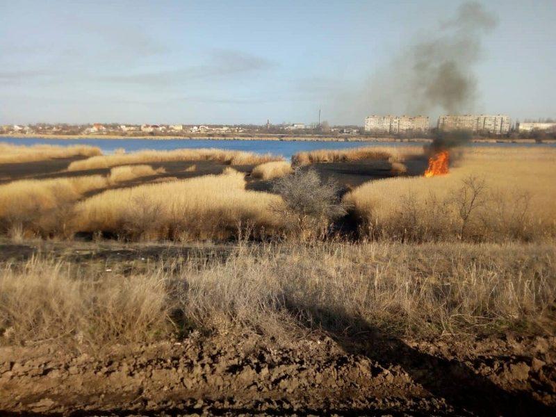 Пожар камыша на Николаевщине едва не перекинулся на жилые дома и гаражи