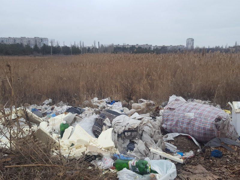 На Намыве озеро, куда прилетают водоплавающие птицы, засыпают мусором
