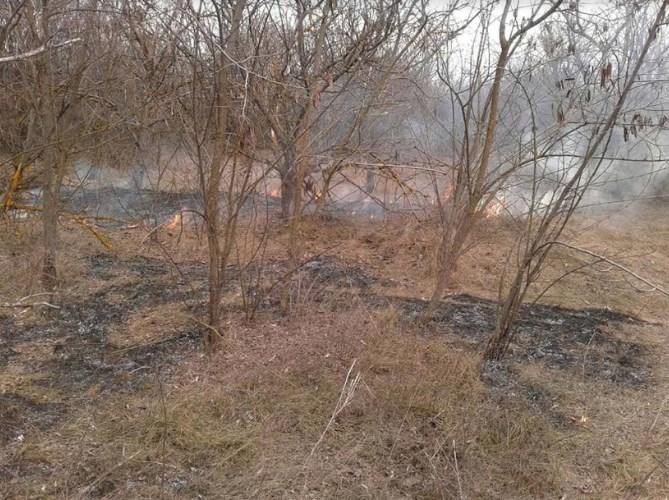 В Березнеговатском районе горела сухая трава и кустарники вдоль дороги