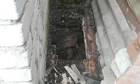 В Вознесенске спасатели пришли на помощь собаке, упавшей в трехметровую яму