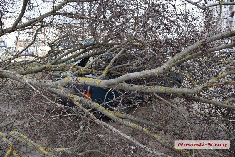 На Намыве в нескольких метрах от детской площадки на машину упало дерево