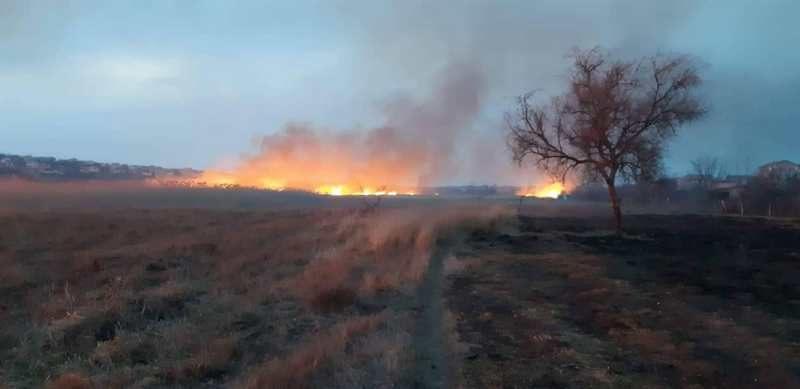На Николаевщине за сутки выгорело почти 5 га сухостоя