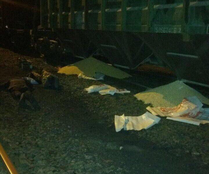 Николаевские железнодорожники поймали кукурузных воров