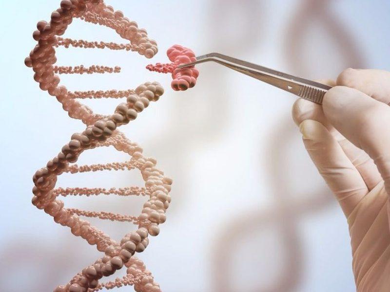 Биохакер из Днепра: 18-летняя студентка выращивает дома бактерии и клонирует ДНК