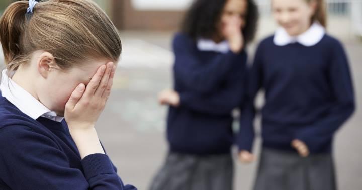 В Николаеве мама девочки, которую буллят в школе из-за диабета, попросила директора о помощи. Его ответ возмутил соцсети