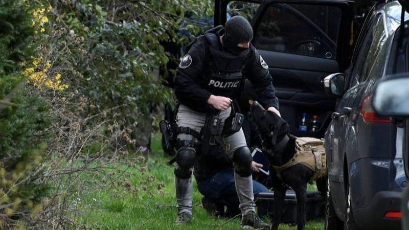 Полиция задержала подозреваемого в стрельбе в Утрехте