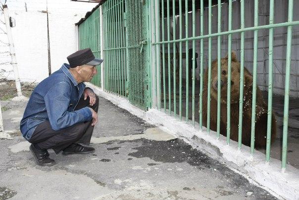 В одной из колоний Казахстана вот уже 15 лет живет медведица
