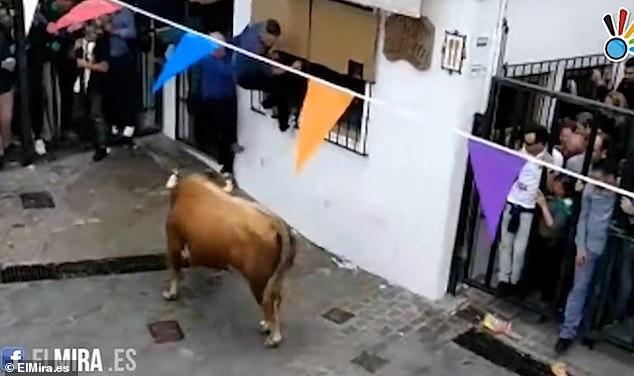 В Испании во время традиционного бега с быками погиб 74-летний мужчина (18+)