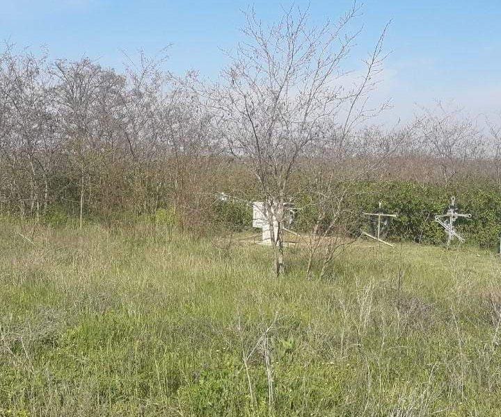 На заброшенное кладбище в Березанском районе отказываются идти даже священники