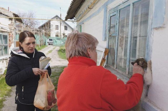 Из-за бешенства в Бердянске объявлен карантин
