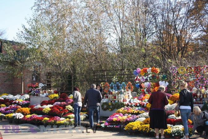 Хватит уговоров: сельсовет на Николаевщине запретил продавать и возлагать на кладбищах цветы и венки из пластика (ДОКУМЕНТ)