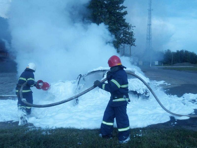 На Николаевщине на трассе автомобиль сгорел дотла (ФОТО)