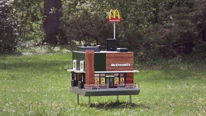 McDonald's начал открывать «рестораны» для пчел