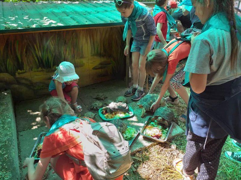В Николаевском зоопарке отпраздновали Всемирный день черепахи (ФОТО)