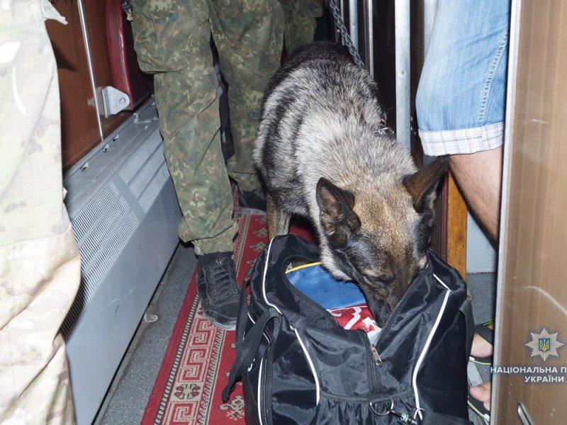 В Луганской области мужчина выбросил из поезда сумку с гранатами