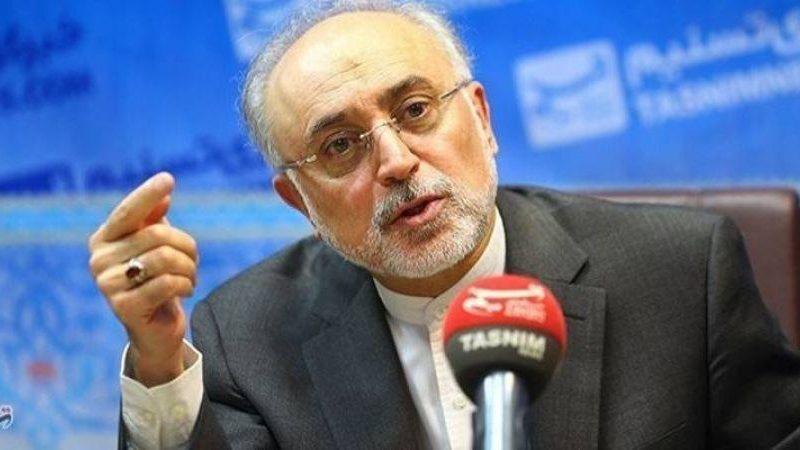 Иран может возобновить обогащение урана до 20% за четыре дня