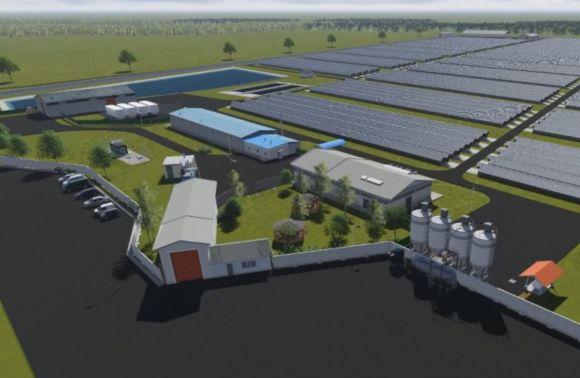 По евростандартам. В Украине построят современную норковую ферму (ФОТО) 1