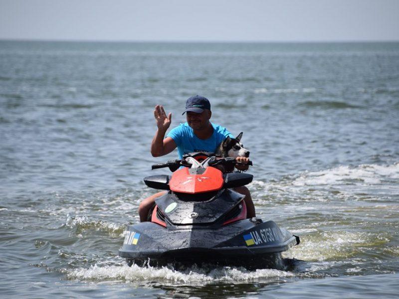 В Рыбаковке спасатель учит щенка хаски ходить с ним в море на водном мотоцикле (ВИДЕО)