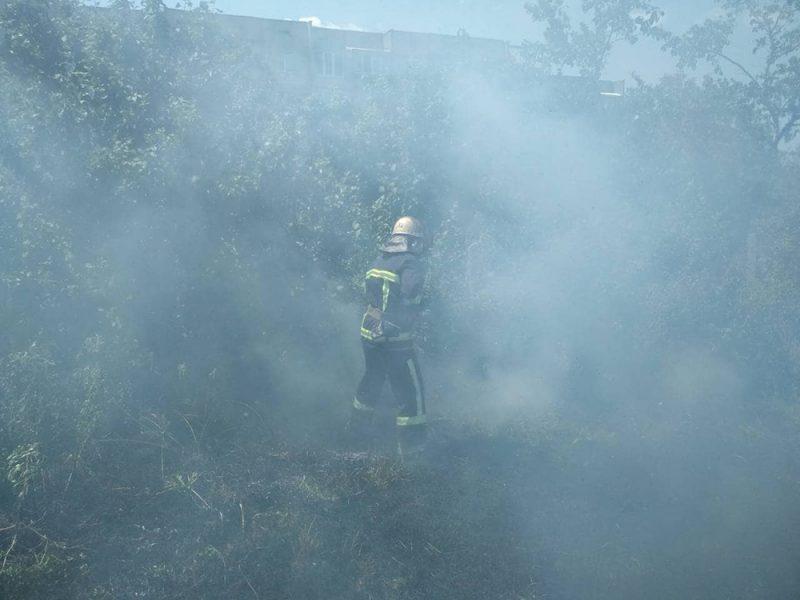 На Николаевщине горела хвойная подстилка в лесничестве, хозпостройка и сухая трава (ФОТО)