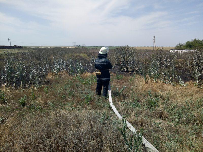 За сутки на Николаевщине горела трава на 3,5 гектаров (ФОТО)