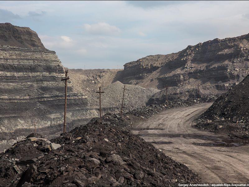 Полтора десятка жителей Кемеровской области просили у Канады убежища из-за экологической катастрофы. Трюдо им ответил (ВИДЕО)