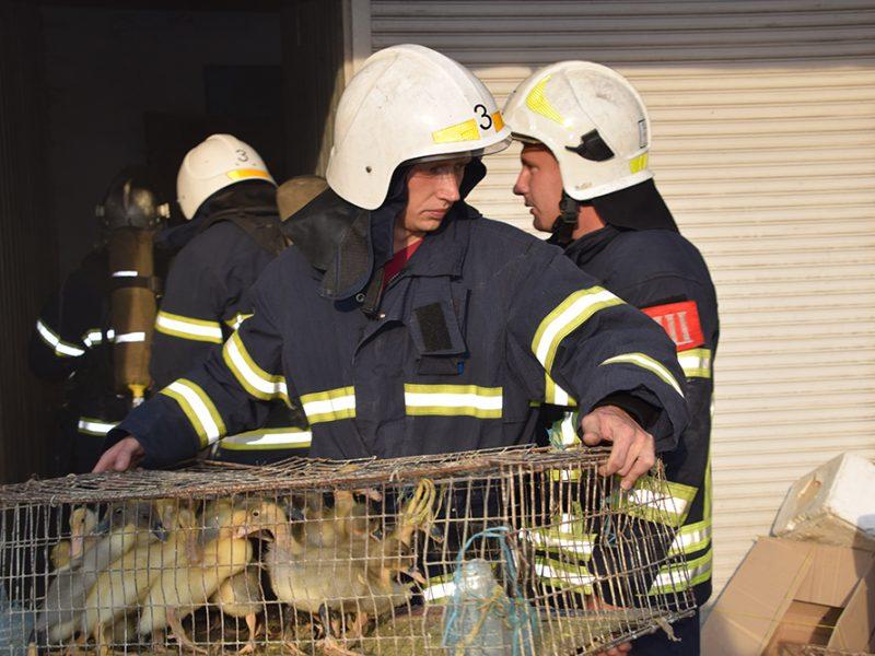 В Центральном районе Николаева спасатели ликвидировали пожар хозпостройки (ФОТО)