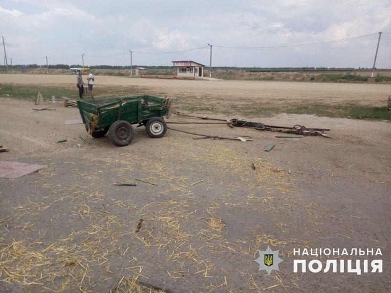 На Николаевщине грузовой  Sprinter врезался в конную подводу, один человек погиб (ФОТО)