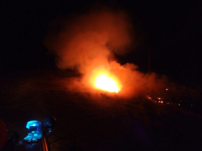 В Николаеве горело сено, а под Николаевом – стерня и лесопосадка на площади 26 га (ФОТО)