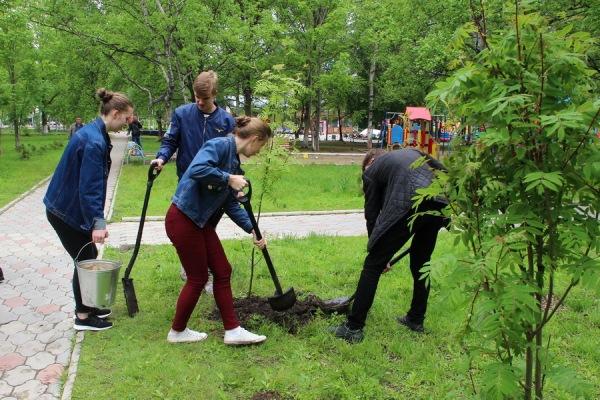 Выпускникам николаевских школ предложили завести новую традицию – высаживать деревья по окончанию учебы