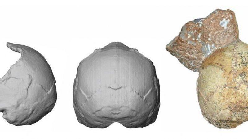 В греческой пещере нашли древнейшие останки человека