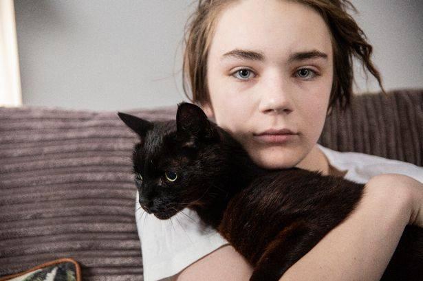 В Великобритании назвали Национального кота 2019 года