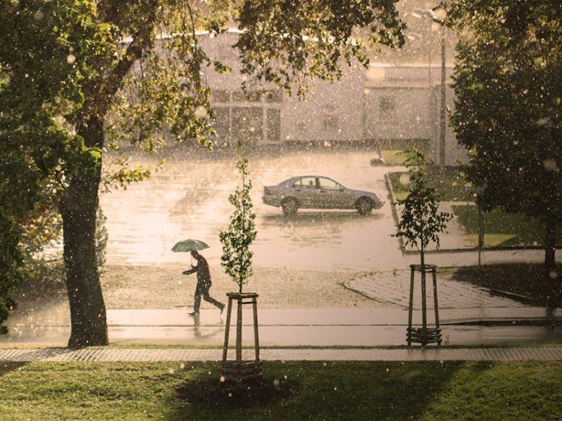 Зарядивший с утра дождь – надолго: сегодня в Николаевской области будет сильно лить – ГСЧС