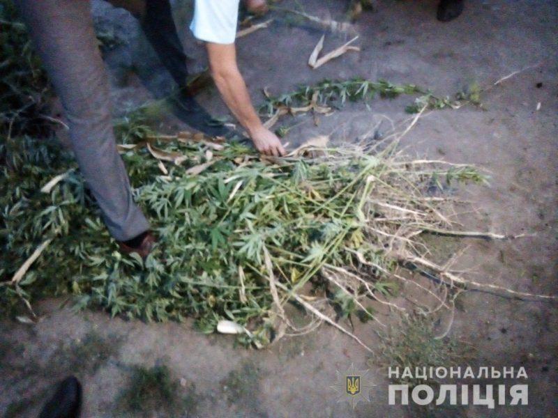 Усугубил. На Николаевщине владелец наркоплантации набросился на полицейского во время обыска (ФОТО)