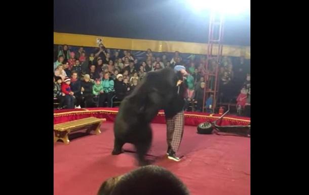 В российском цирке медведь напал на дрессировщика во время представления (ВИДЕО)