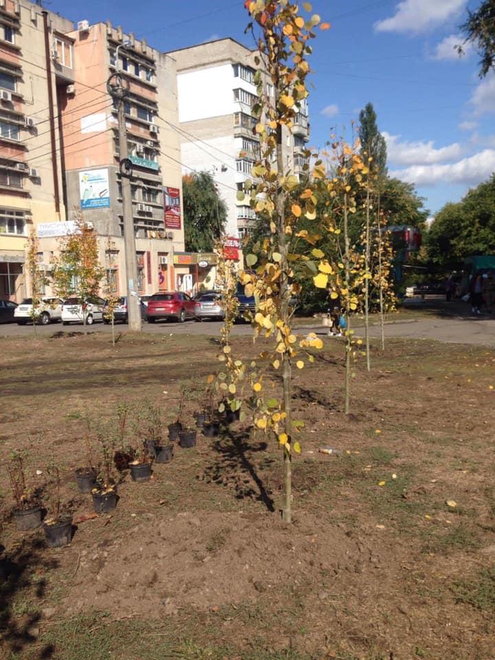 В Николаеве массово стартовала осенняя посадка деревьев и кустов (ФОТО) 7