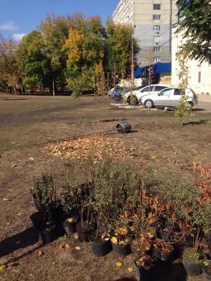 В Николаеве массово стартовала осенняя посадка деревьев и кустов (ФОТО) 11