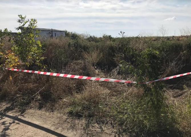 Николаевские пиротехники уничтожили 7 снарядов 5