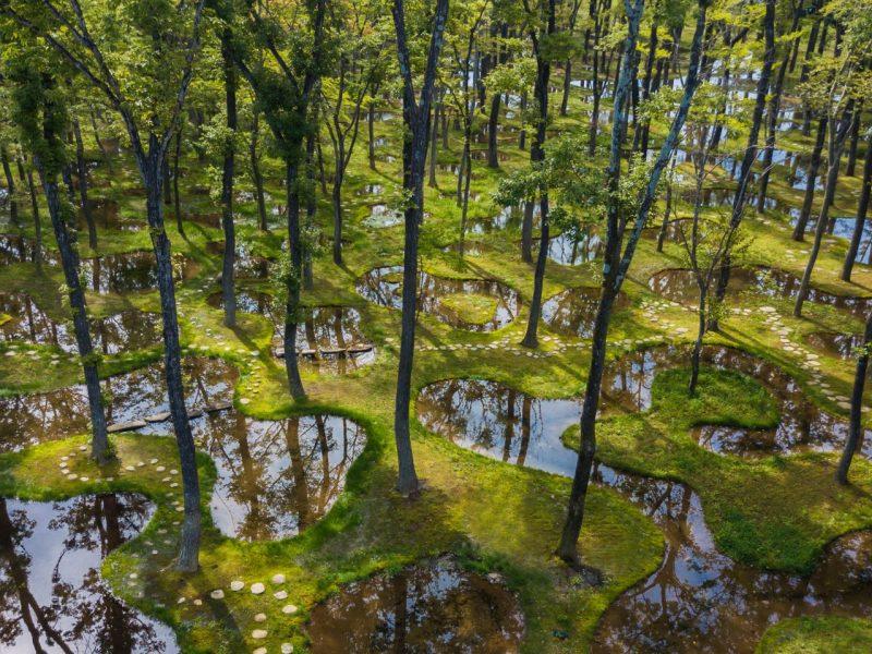 """Японский """"водный сад"""" получил одну из самых престижных архитектурных премий (ФОТО)"""