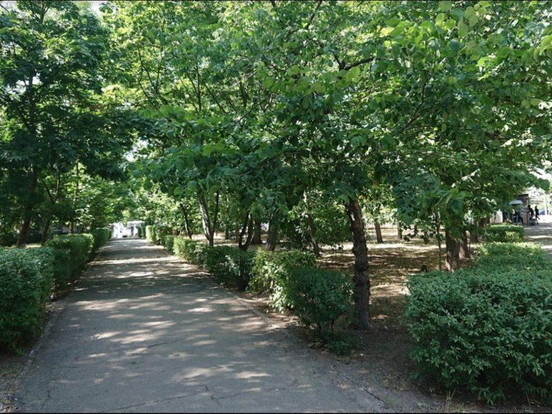 В Николаеве приступили к реконструкции сквера имени Александрова – обещают озеленение, освещение и прочие блага