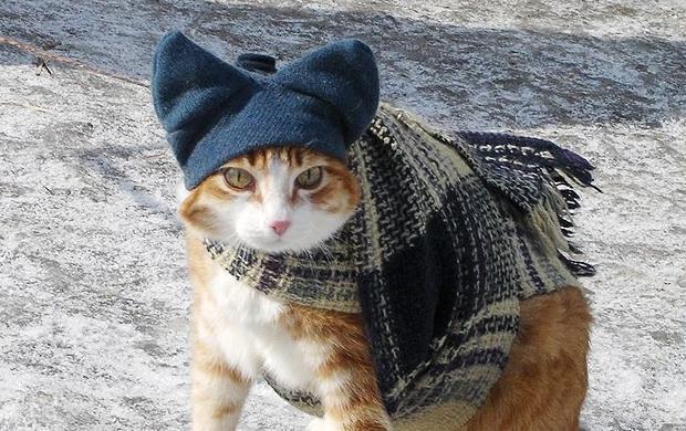 Завтра в Украине без осадков, температура до +4