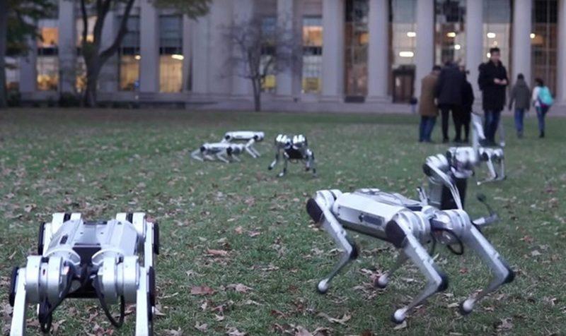 В США выгуляли в парке роботов-собак (ВИДЕО)
