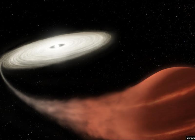 Телескоп NASA «рассмотрел» «звезду-вампира» (ФОТО)