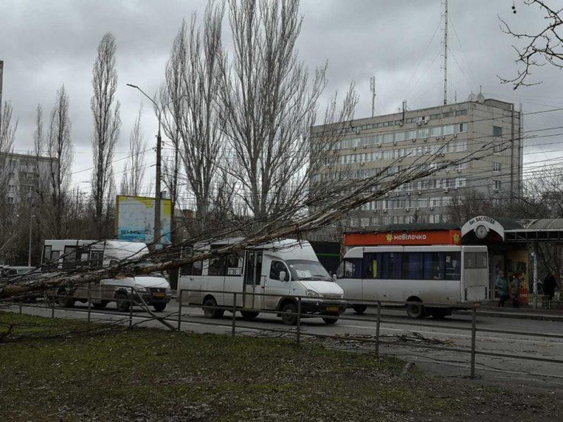 После урагана на Николаевщине без энергоснабжения остались полторы сотни населенных пунктов (ФОТО)