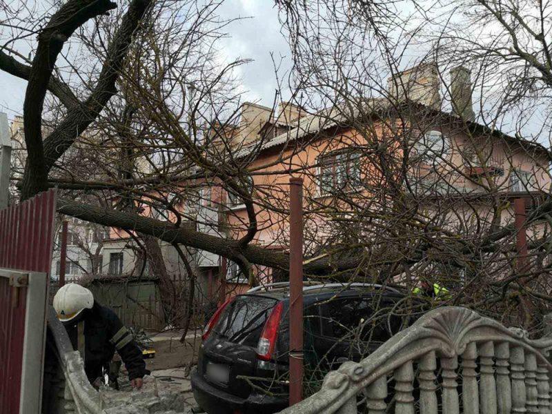 """Штормовой циклон """"Юлия"""": сильней всего ветер буйствовал на Николаевщине"""