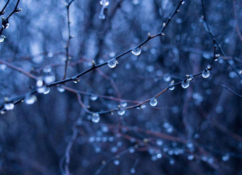 Погода в Украине: в первые дни лета пройдут дожди, в Карпатах — мокрый снег и заморозки