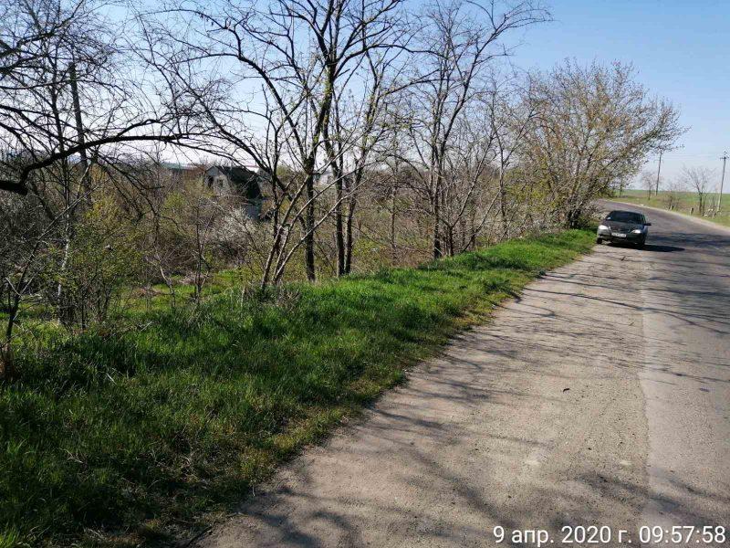 В Николаеве убрали от мусора обочины дороги, ведущей на городскую свалку (ФОТО)