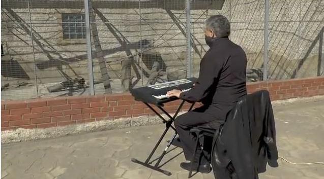 Чтобы животные не скучали во время карантина, директор Одесского зоопарка сыграл им на синтезаторе (ВИДЕО)