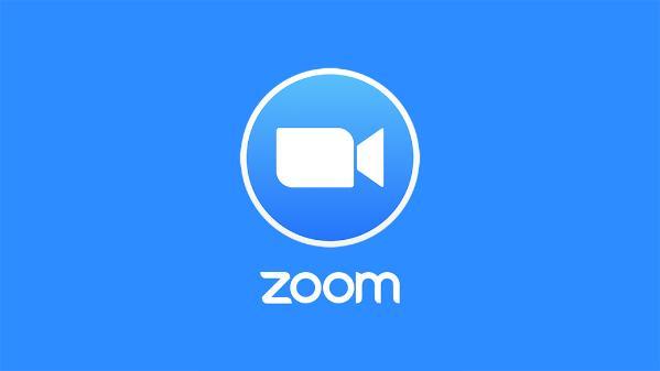 Zoom-конфуз: выступление депутата на онлайн-заседании прервало появление голой жены (ВИДЕО)