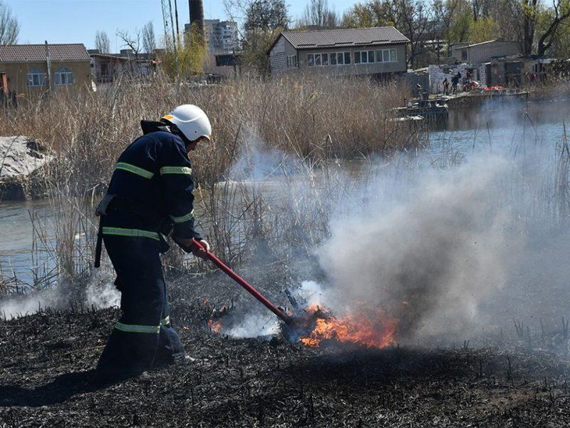 В Николаеве на Намыве горел камыш и автомобильные шины (ФОТО)