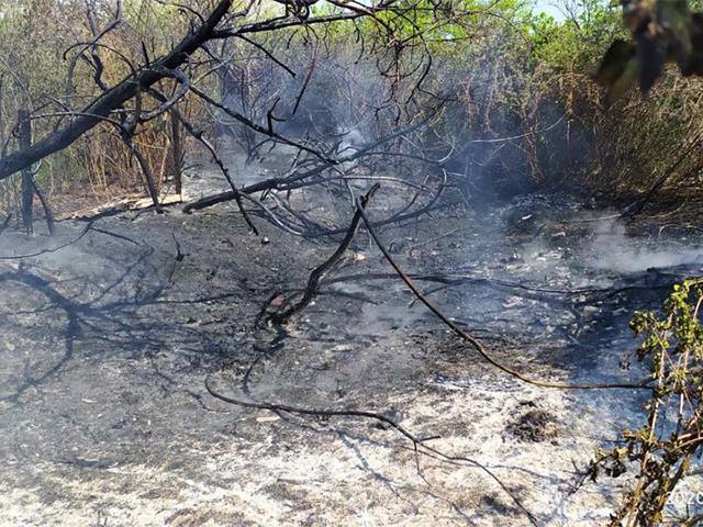 Первомайский пожар: под Николаевом тушили сухую траву у дач (ФОТО)
